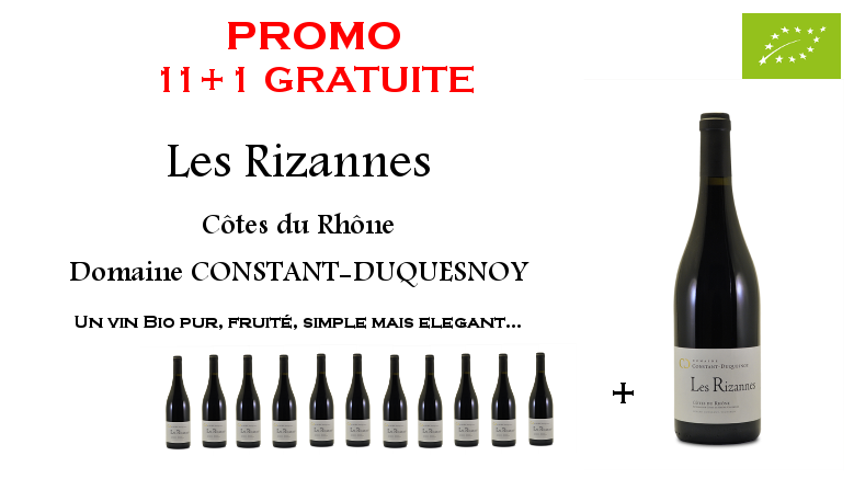 Rizannes 11+1
